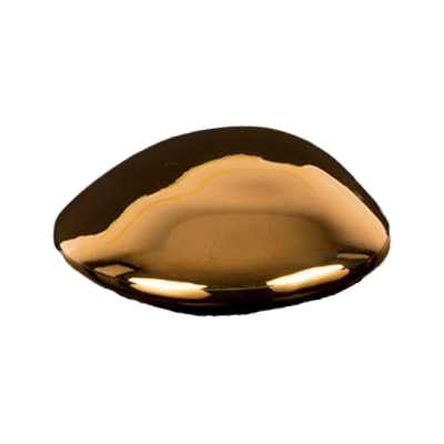 Royal Luxury Shell Gold